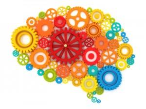 trailbrlazer brain